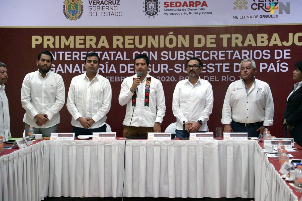 Veracruz y estados del sureste refuerzan coordinación para enfrentar el abigeato