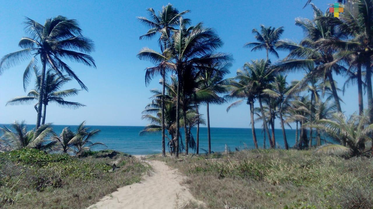 Playas del ejido Guillermo Prieto de Coatzacoalcos, una opción para próximo periodo vacacional