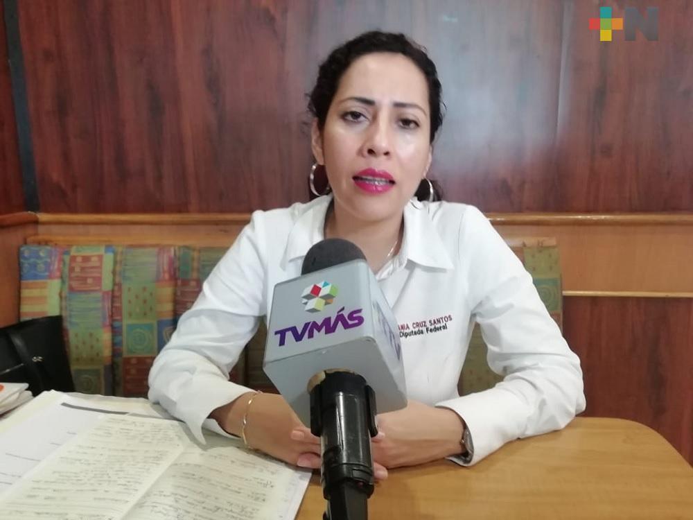 A dos años del triunfo, hoy México es más democrático, justo e igualitario: diputada Tania Cruz