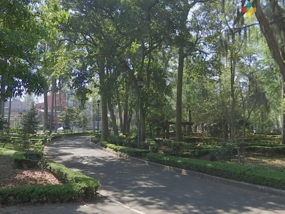 Áreas verdes urbanas, de gran valor para reducir estrés y ansiedad