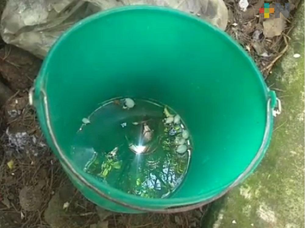 Desabasto de agua complica la prevención sanitaria de Covid 19 en Huayacocotla