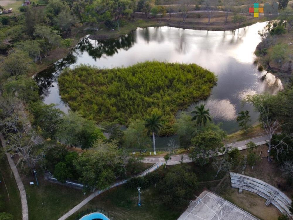 Durante contingencia, dan mantenimiento a las áreas verdes en Tantoyuca