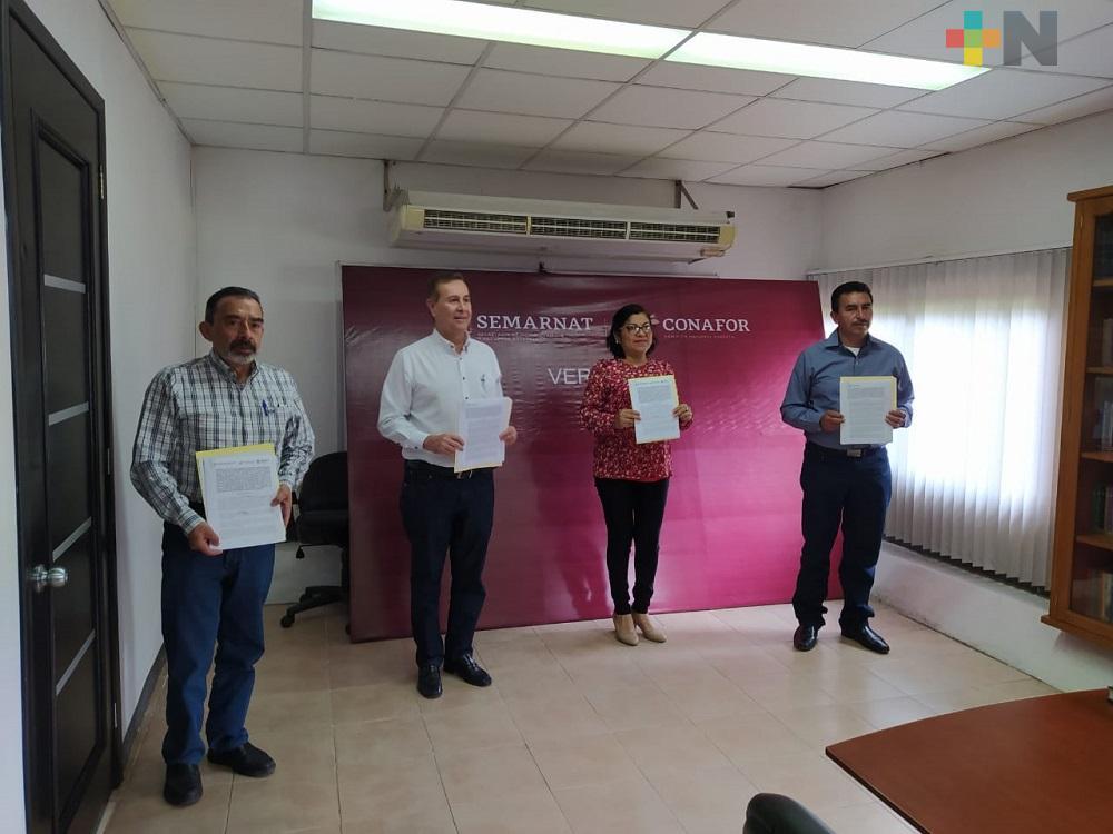 Gobierno estatal y federal aportan más de 9 mdp para combatir incendios forestales en Veracruz