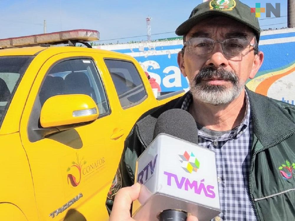 Sin incendios activos en el estado de Veracruz: Conafor