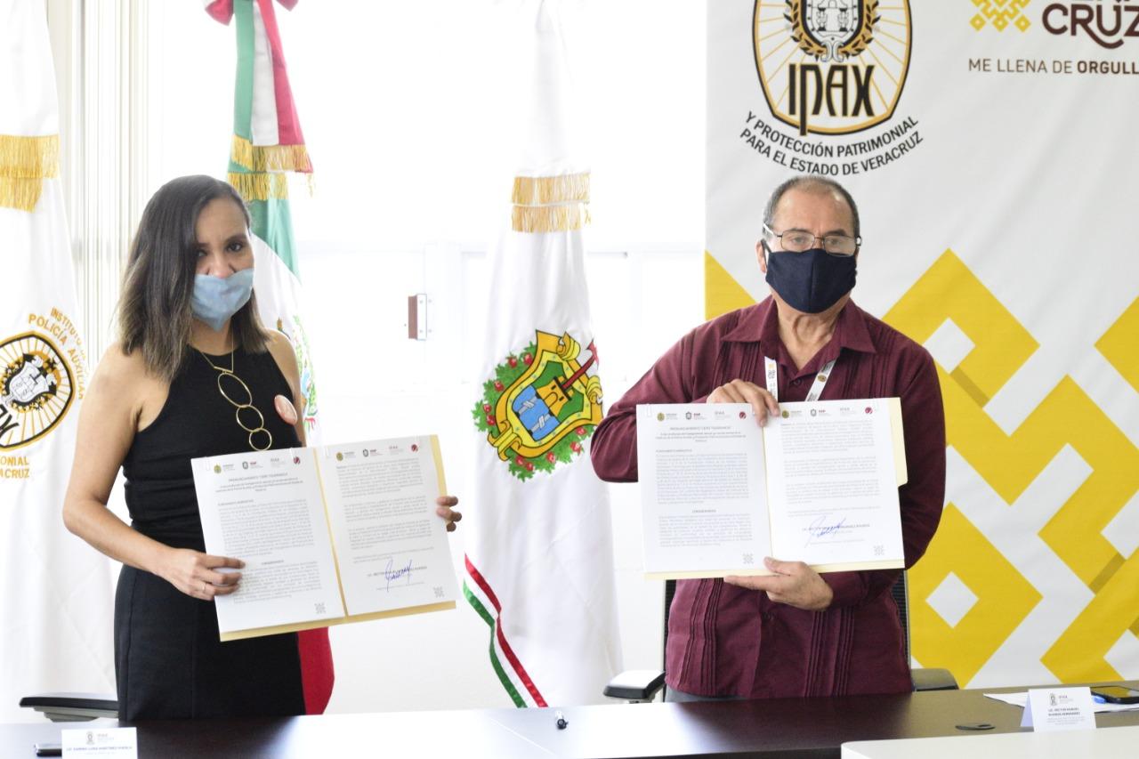 """IPAX se pronuncia por """"Cero Tolerancia"""" contra la violencia de género"""