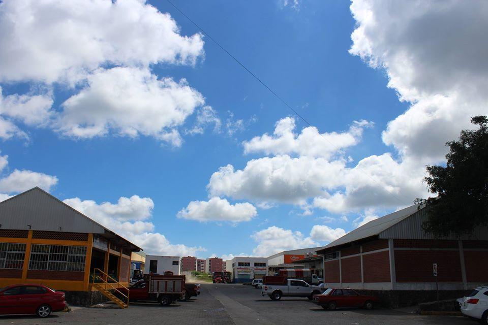 Realizarán limpieza en Central de Abastos de Xalapa por contingencia sanitaria
