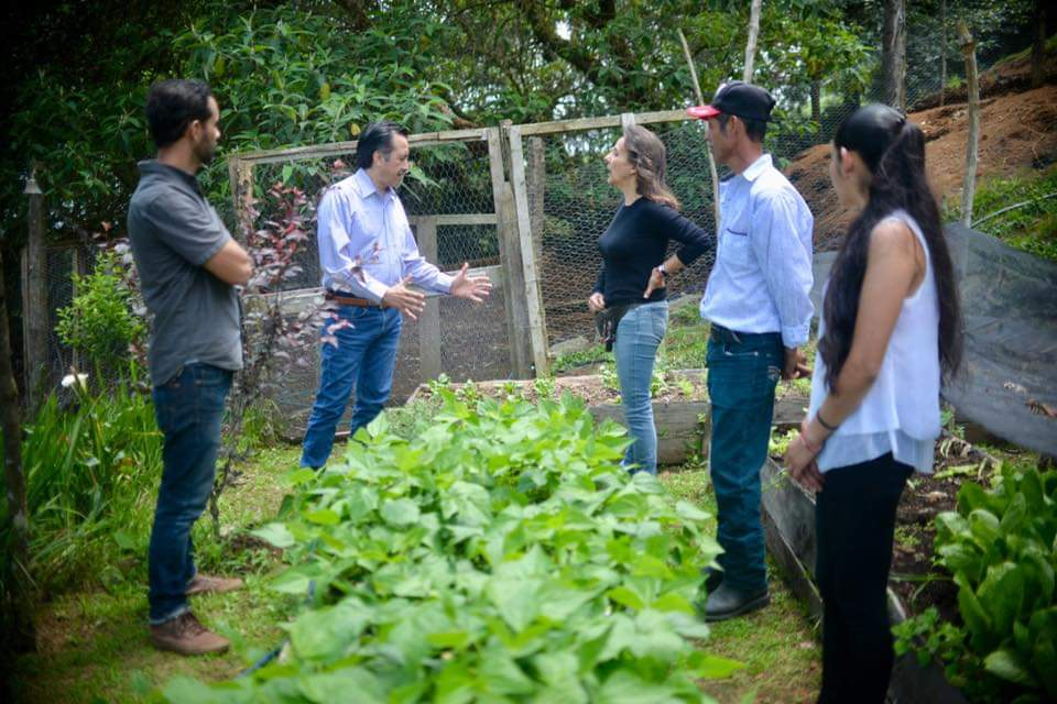 Proyectos productivos ayudan a población ante COVID-19: Cuitláhuac García