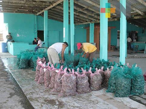 Productores de Tamiahua recibirán fertilizante para mejorar producción