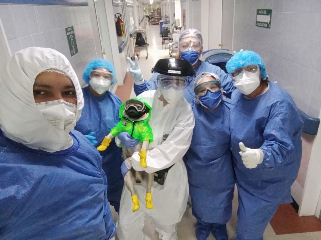 Trabajadores del Centro Médico Nacional del ISSSTE reciben terapia de convivencia canina