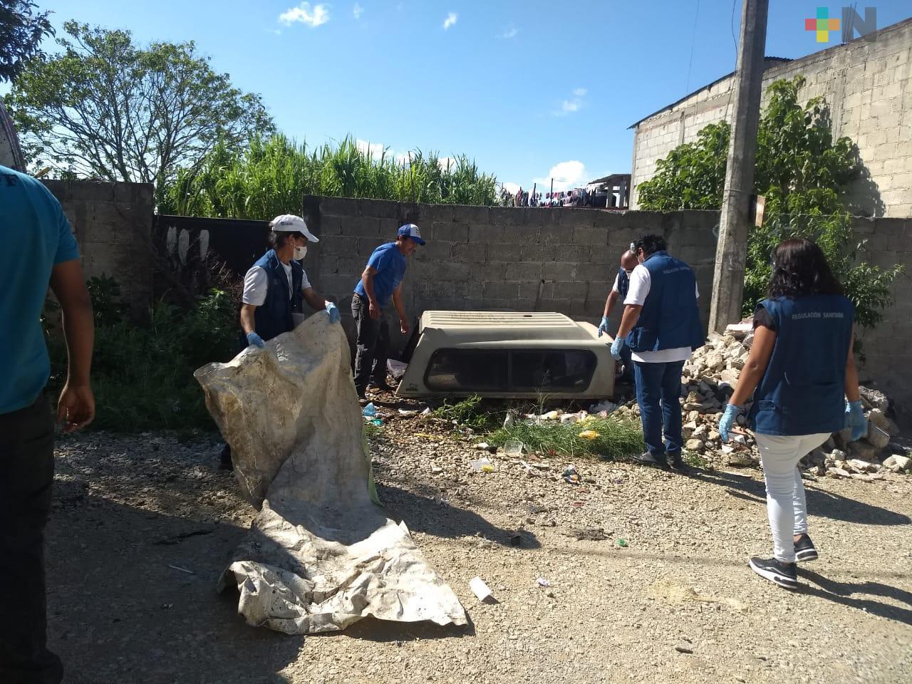 Intensifican acciones para prevenir el dengue en Xalapa