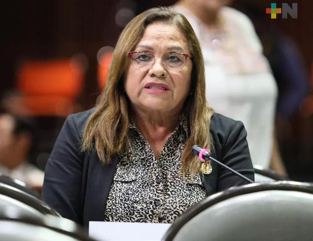 Diputada federal Carmen Medel Palma tiene COVID-19