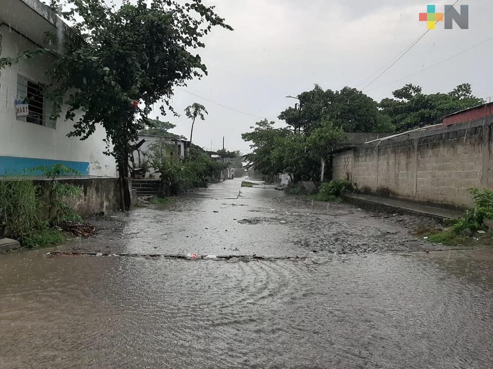Depresión tropical Cristóbal, deja afectaciones en 12 municipios de Veracruz