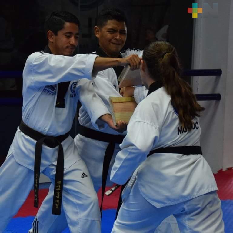 """Mul Do Taekwondo Veracruz co ninvoca a """"Desafío Virtual"""""""