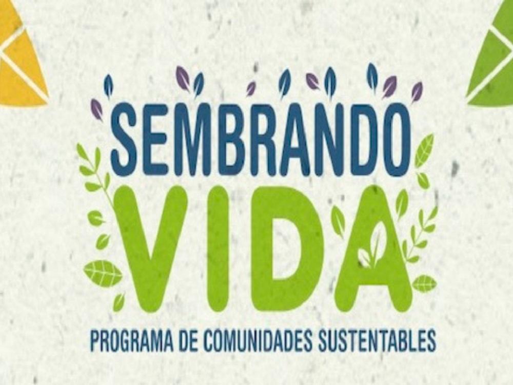 Secretaría de Bienestar reasignó a Veracruz más de 30 mdp para el programa Sembrando Vida