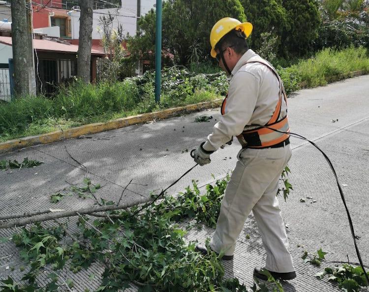 Atiende PC municipal afectaciones por vientos en Xalapa