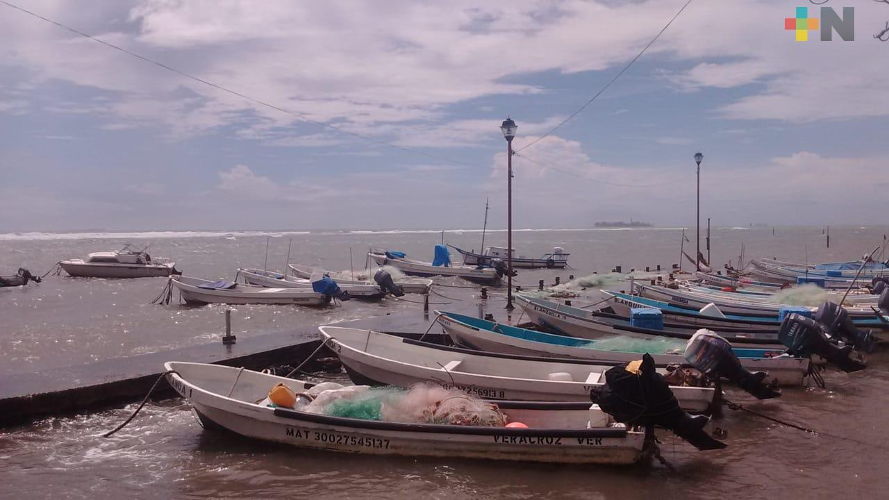 Apoyo económico federal está llegando a pescadores de Veracruz y Boca del Río
