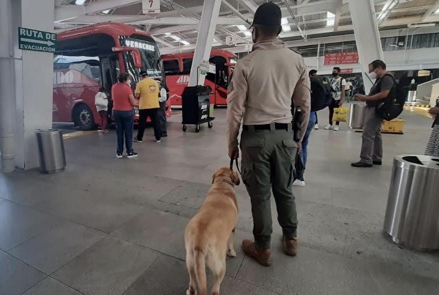 Asegura SSP 5 kilos de droga en CAXA y detiene a pasajero