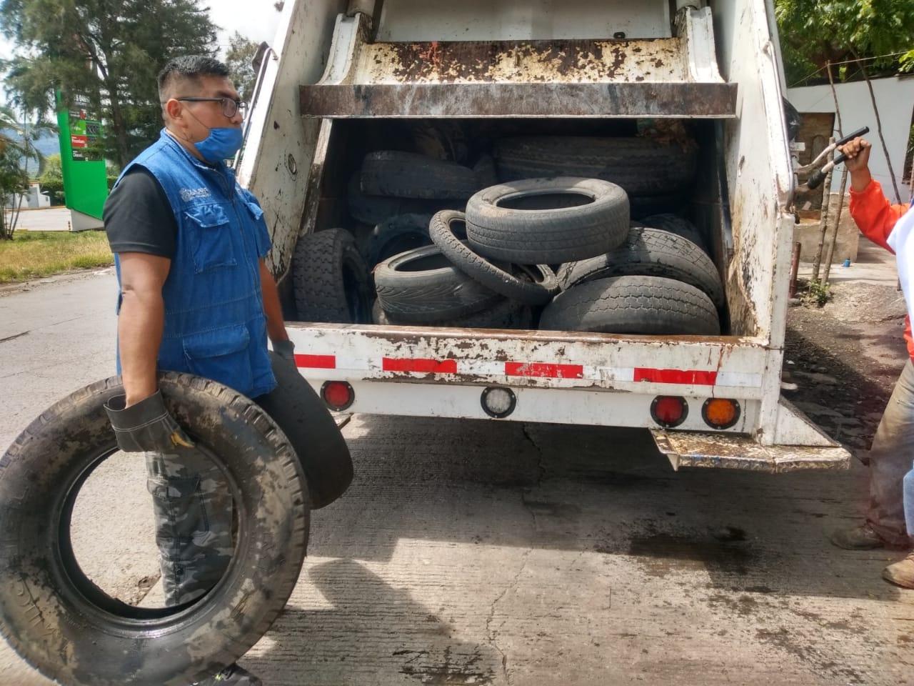 Reinicia la descacharrización en Fortín