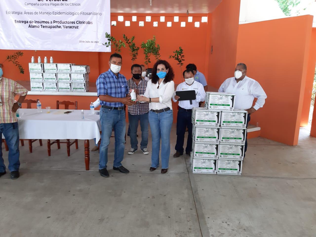 Entrega SEDARPA 77 mil litros de sales potásicas para combate del Dragón Amarillo