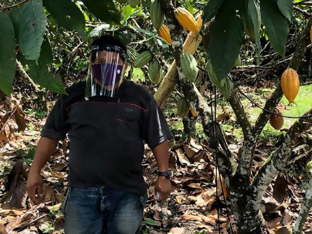 Con cascos de bioseguridad, campesinos en Colombia trabajan para alimentar al país en medio de la pandemia