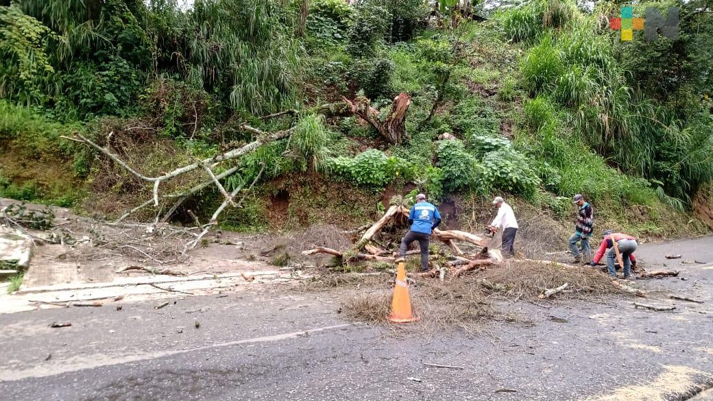 Lluvias ocasionan tres decesos y 11 municipios afectados: SPC