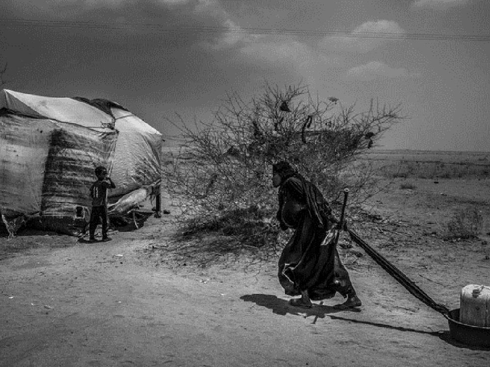 En Yemen la peor crisis humanitaria quedaría sin atención por falta de fondos