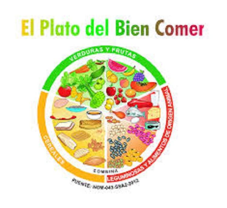 Plato del Bien Comer asegura una alimentación balanceada: Nutrióloga