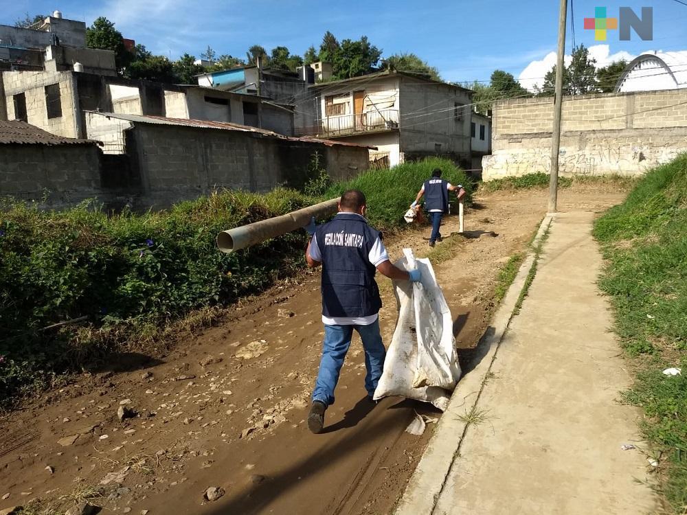 Siguen las jornadas de descacharrización en Xalapa