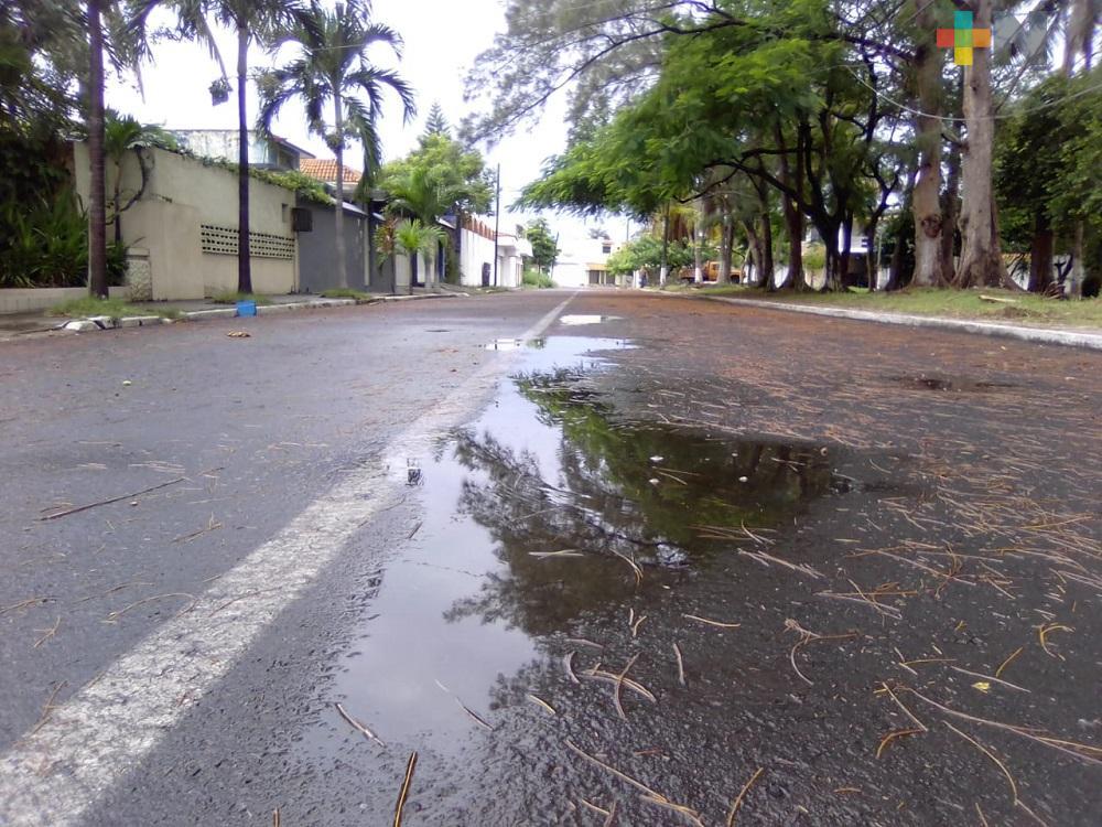 Vecinos limpian calles para evitar inundaciones en el fraccionamiento Floresta de Veracruz