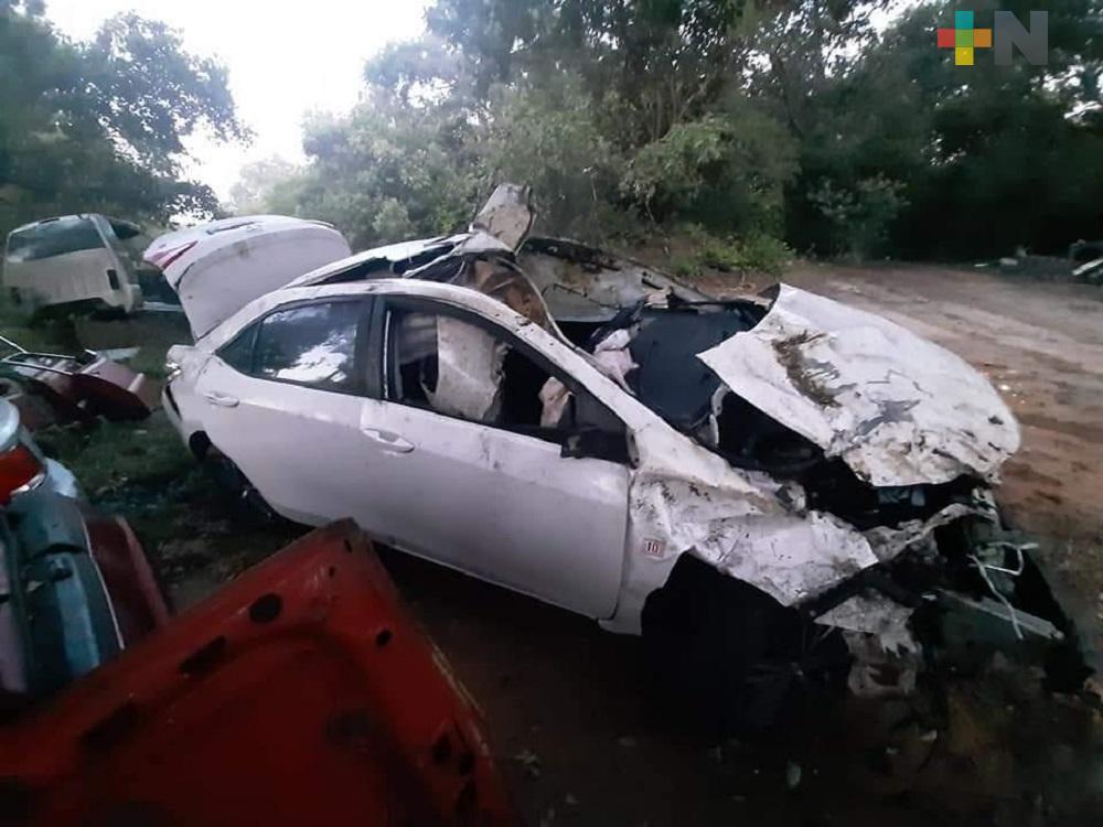 Vehículo queda destrozado al impactarse contra vacas en carretera Agua Dulce-El Burro
