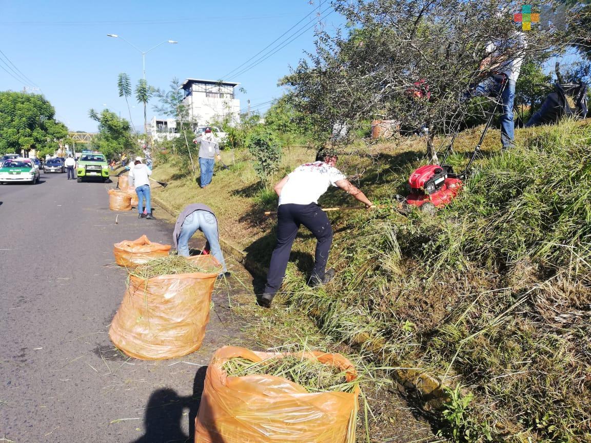 SSP realizó labores de limpieza en camellón del circuito Rafael Guízar