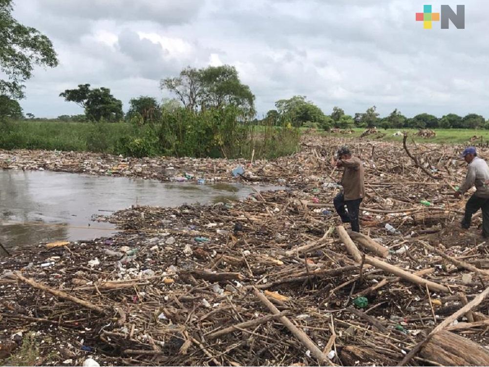 El río Blanco arrastra toneladas de palizada y desechos sólidos por intensas lluvias
