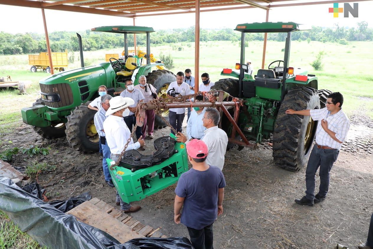Para enfrentar sequía con pasto mejorado, SEDARPA dota a ganaderos de Ozuluama de semilla y maquinaria