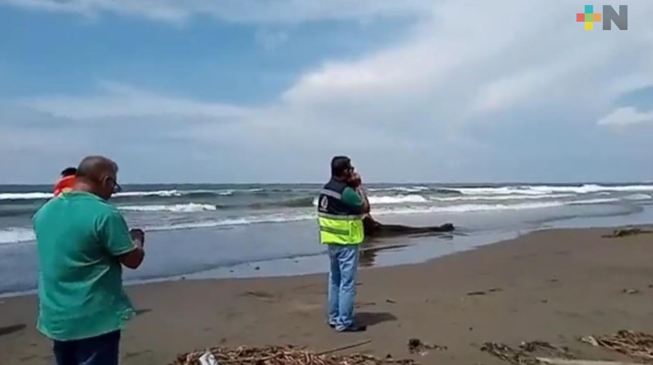 Muere joven ahogada en playas de Coatzacoalcos