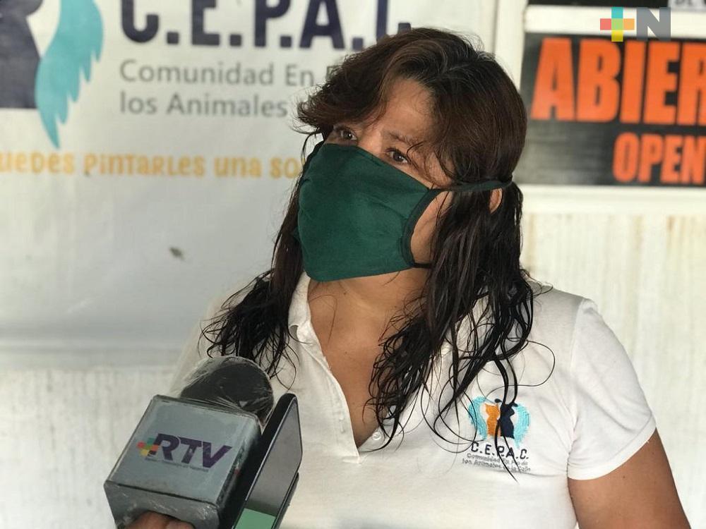 Por pandemia, aumentan abusos y maltrato a mascotas en Coatzacoalcos