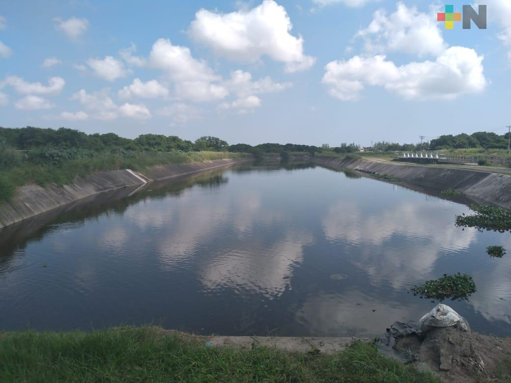 Vecinos del fraccionamiento Floresta solicitan permiso para desazolve de manglar de Arroyo Moreno