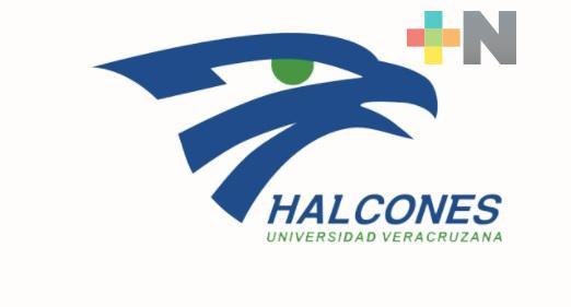 """Copa Halcón """"On line"""" registró buenas marcas"""