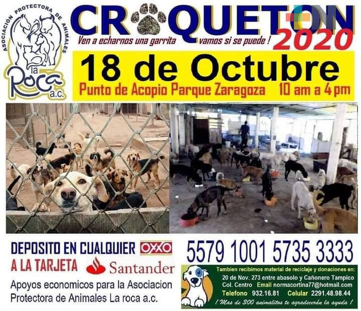 Albergue La Roca realizará croquetón el próximo domingo