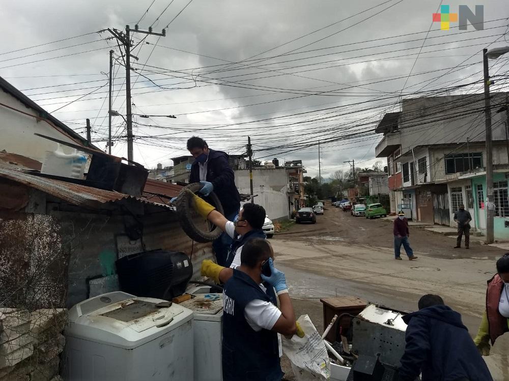 En colonia Emiliano Zapata de Xalapa realizan jornada de descacharrización