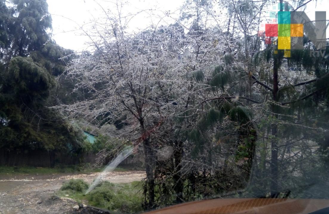 Se emitió Aviso Especial por Frente Frío 37 en el Estado de Veracruz
