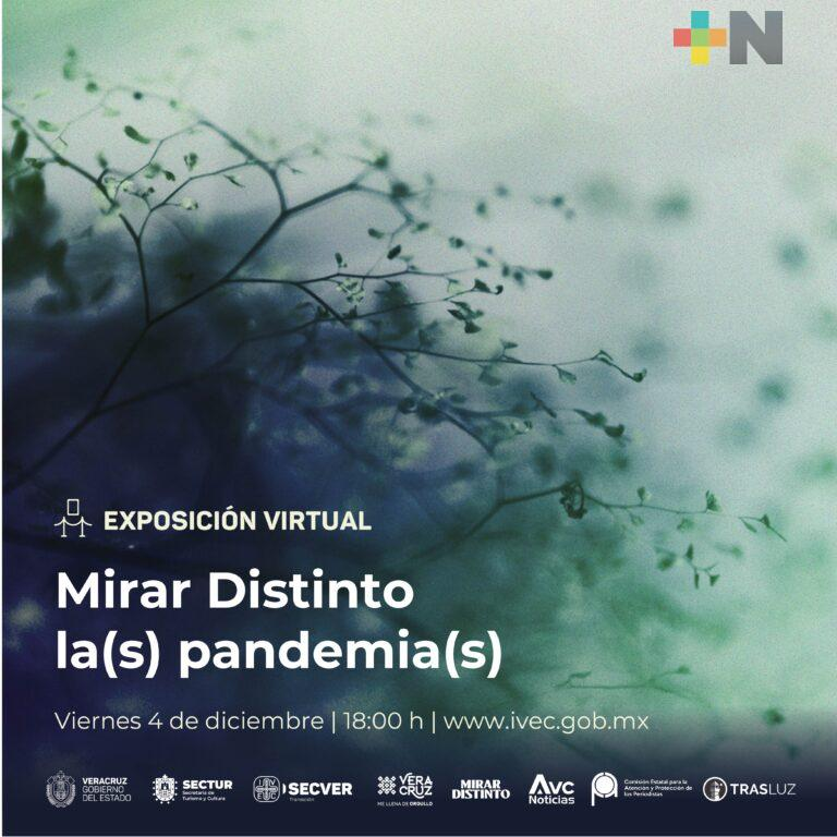 Invita IVEC a la exposición virtual Mirar Distinto La(s) Pandemia(s)