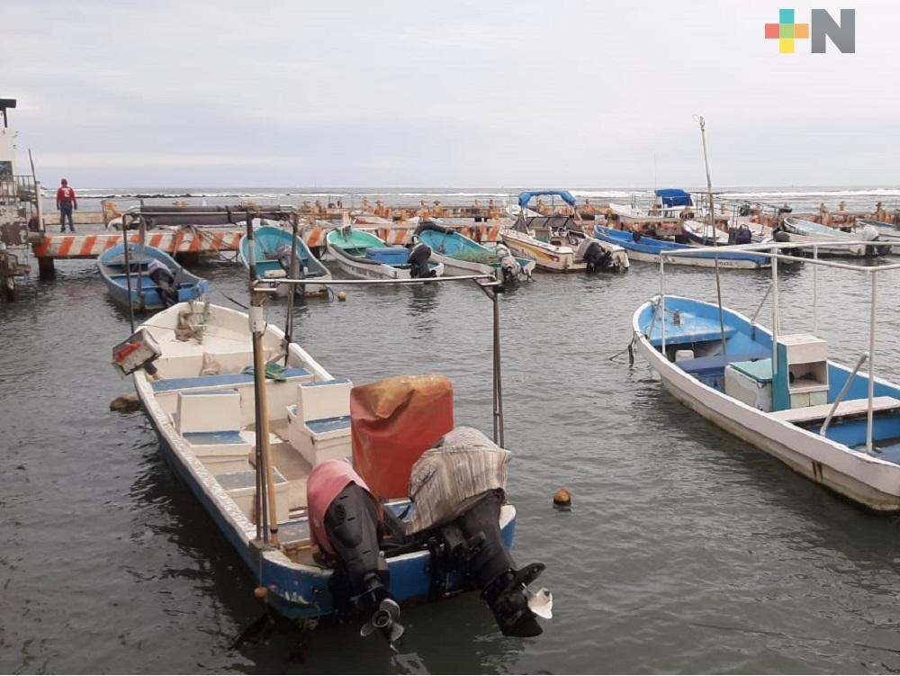 Caída de ventas afecta a pescadores de Veracruz-Boca del Río; esperan aprobación de proyectos