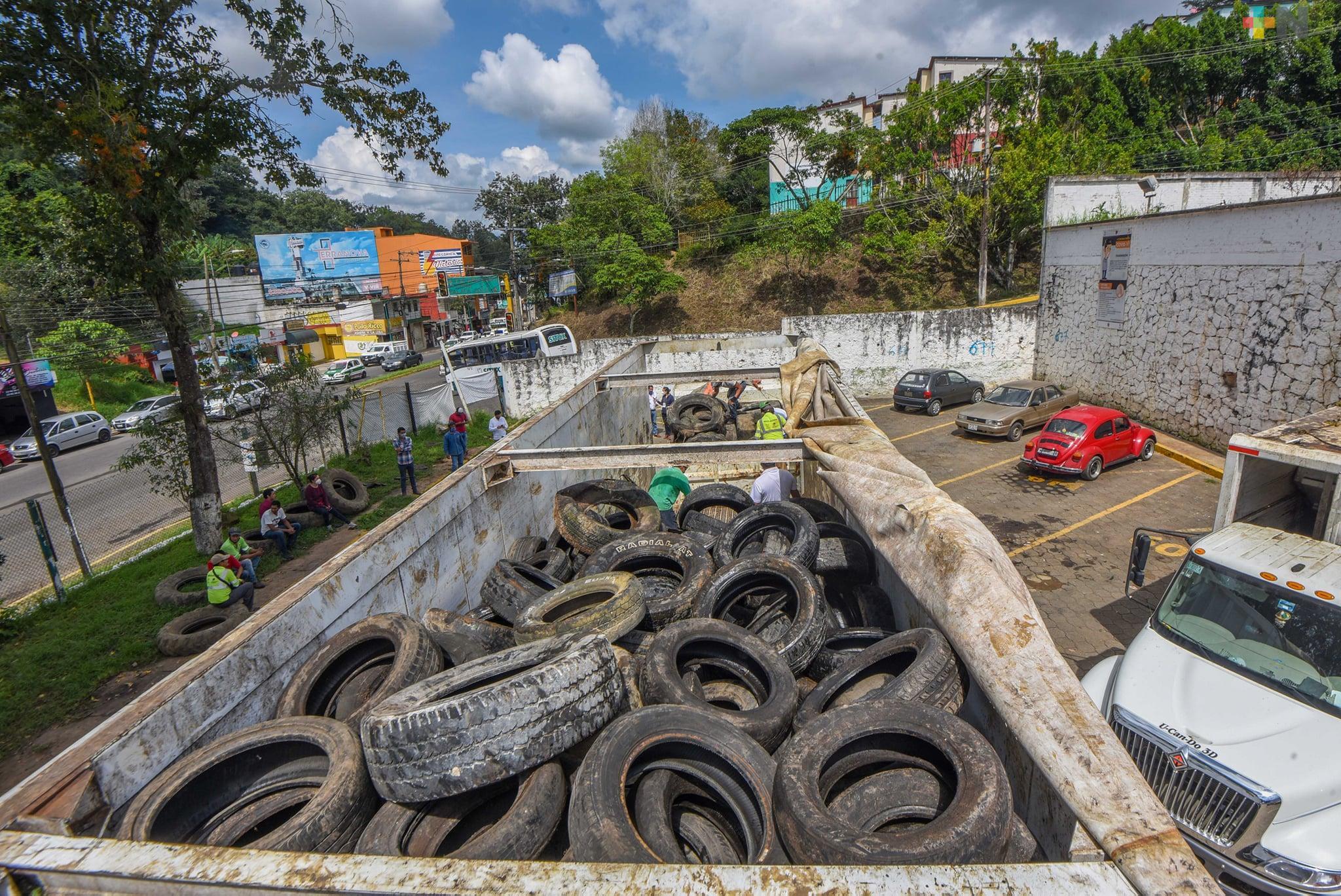 Acopia Ayuntamiento de Xalapa 150 toneladas de llantas