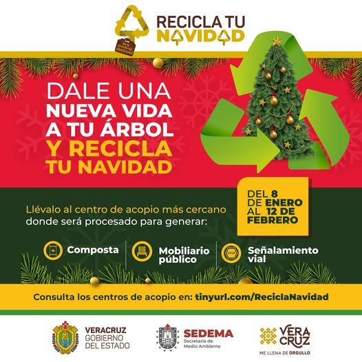 50 ayuntamientos veracruzanos se suman a la campaña Recicla tu Navidad
