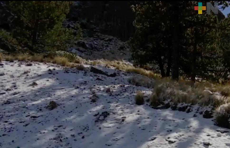 Segunda caída de nieve en la parte alta del Cofre de Perote en este año