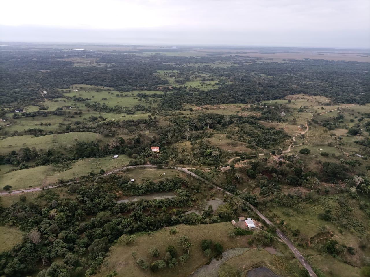 Confirma SSP homicidio de 12 personas en Las Choapas; realiza intenso operativo