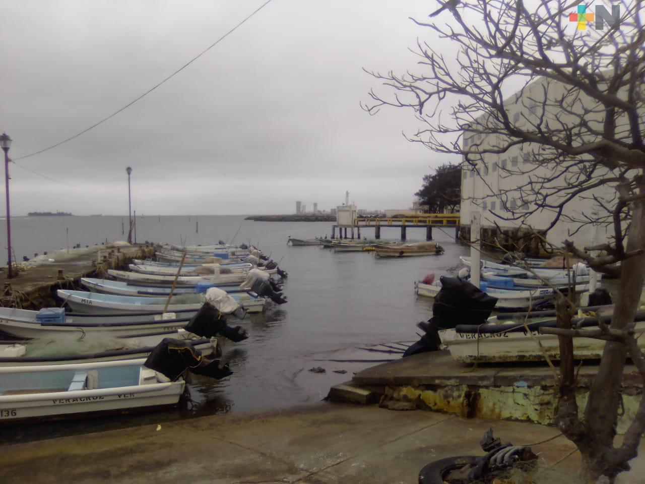 Pescadores de zona conurbada pedirán les permitan pescar pulpo