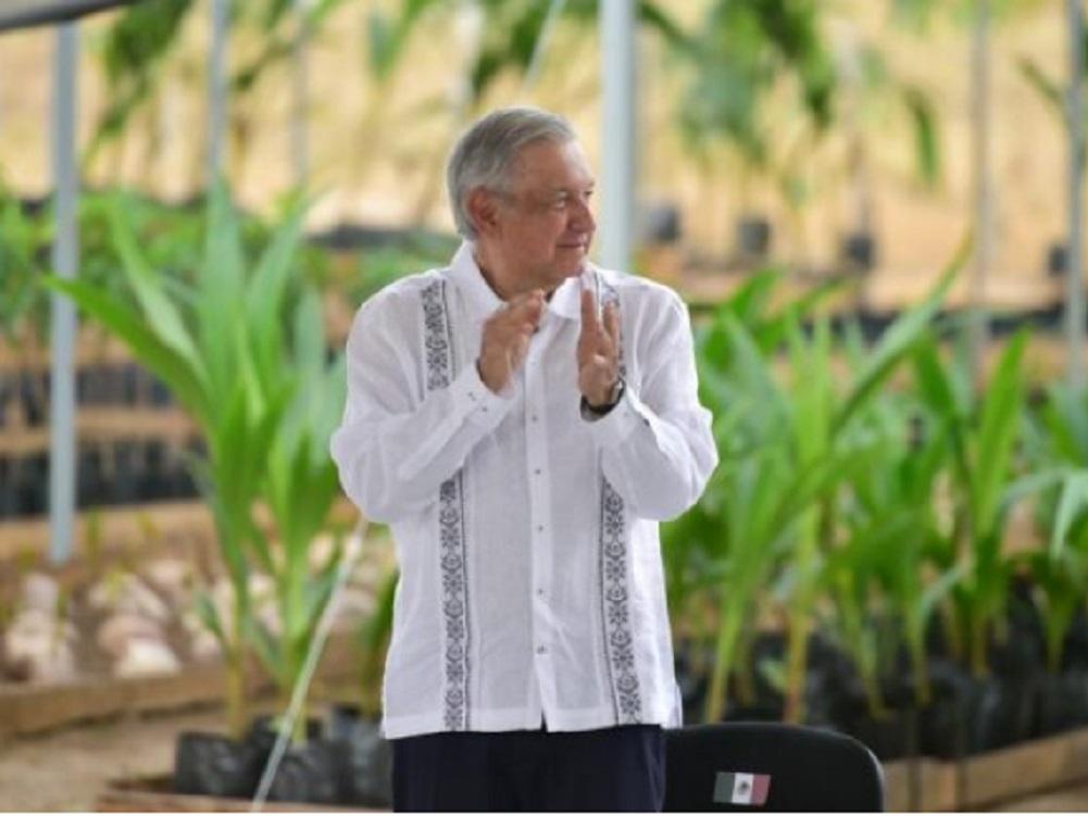 Presidente evalúa avances de Sembrando Vida en Petatlán, Guerrero
