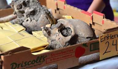 Continúa INAH con análisis de 80 entierros humanos prehispánicos descubiertos en Atlixco, Puebla