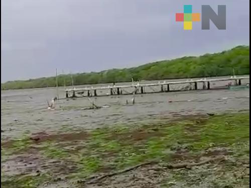 Agua de laguna en Alvarado se retiró 500 metros de la orilla